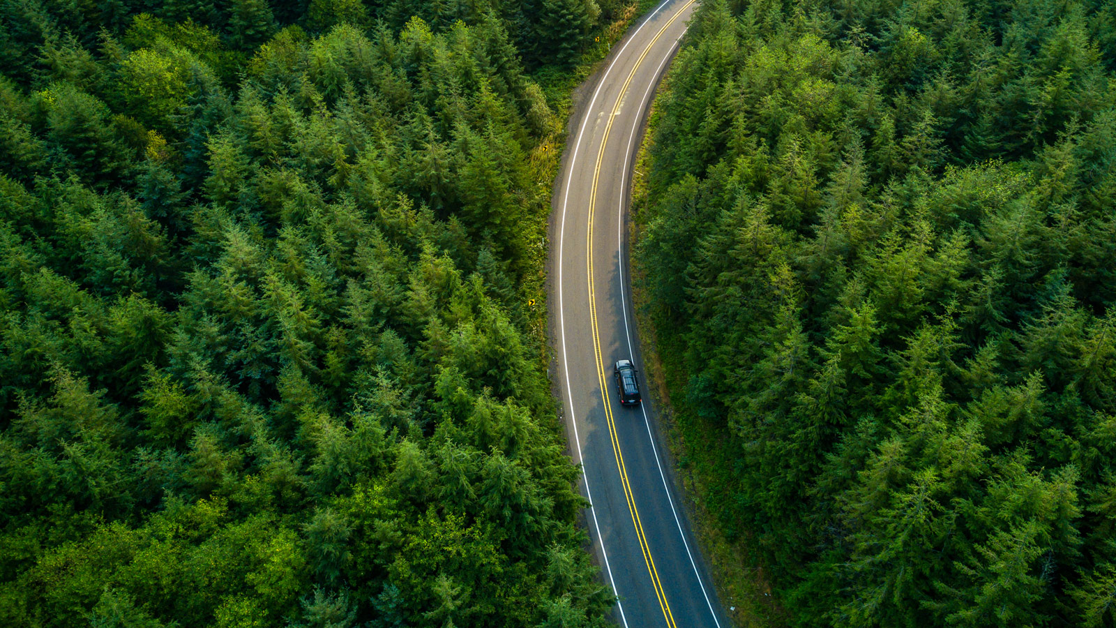 Auto ajaa tietä ympärillä metsää.